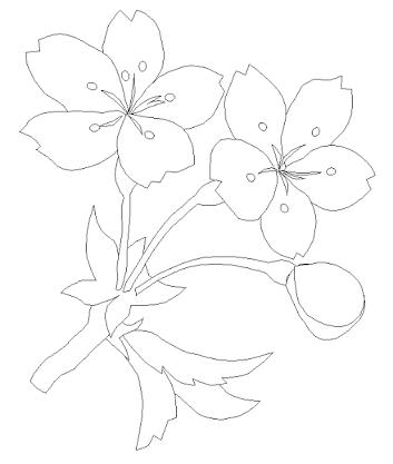 塗り絵 花 簡単」の画像検索結果   ぬりえ   桜の, 塗り絵, ぬりえ