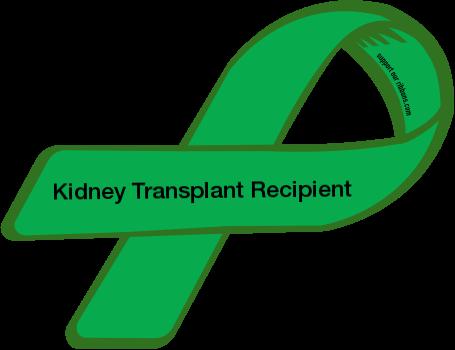 custom ribbon kidney transplant recipient kidney pinterest