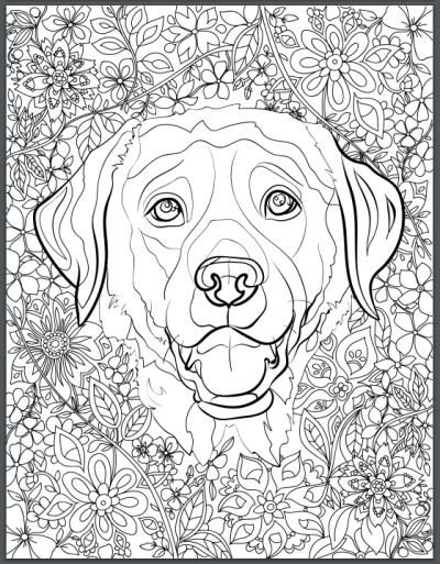 adult coloring pages dogs Pin by julia on Colorings | Coloring books, Coloring pages, Adult  adult coloring pages dogs