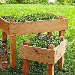 Bancales Son Una Idea Para Los Que Tengan Terraza O Balcon Y Deseen Cultivar Verduras Ademas La Gente Mayo Huerto Urbano Huerta En Cajones Huerta En Terraza