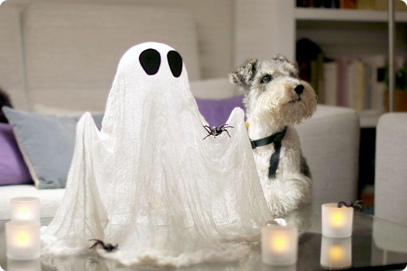 Cómo hacer fantasmas de Halloween con gasa de algodón hidrófilo - halloween decorations for cheap