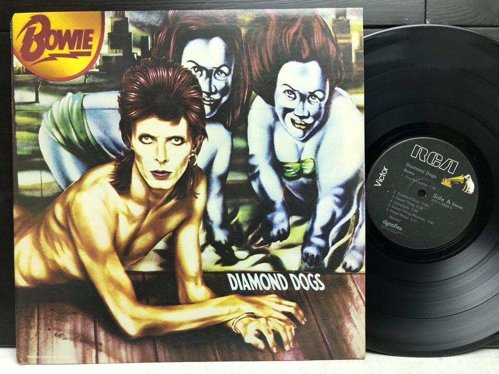 David Bowie Diamond Dogs Ayl1 3889 Rca Black Label Lp Vinyl Record Album Stores Ebay Com Capcollectibl David Bowie Diamond Dogs Vinyl Record Album Diamond Dogs