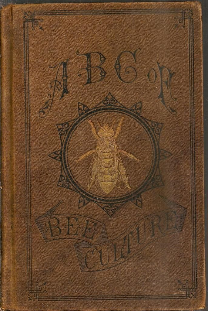 Rare 1888 bee keeping honey honey bees illustrated early victorian ...