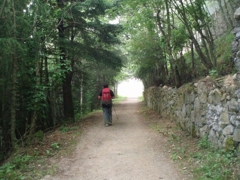 Ocebreiro Camino Francés