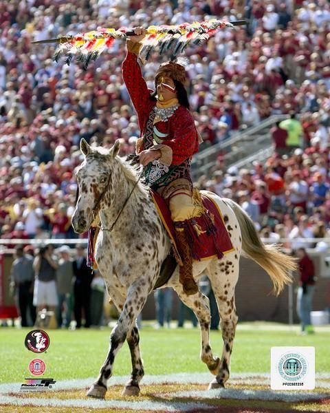 Love This Florida State University Florida State Florida State Football