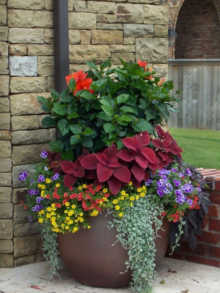 Large Flower Plant Pots By The Front Of The House Best Front Door Flower Pot Ideas Pretty Porch F Container Gardening Flowers Large Flower Pots Flower Tower