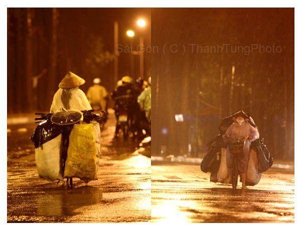 Thanh Tung photos