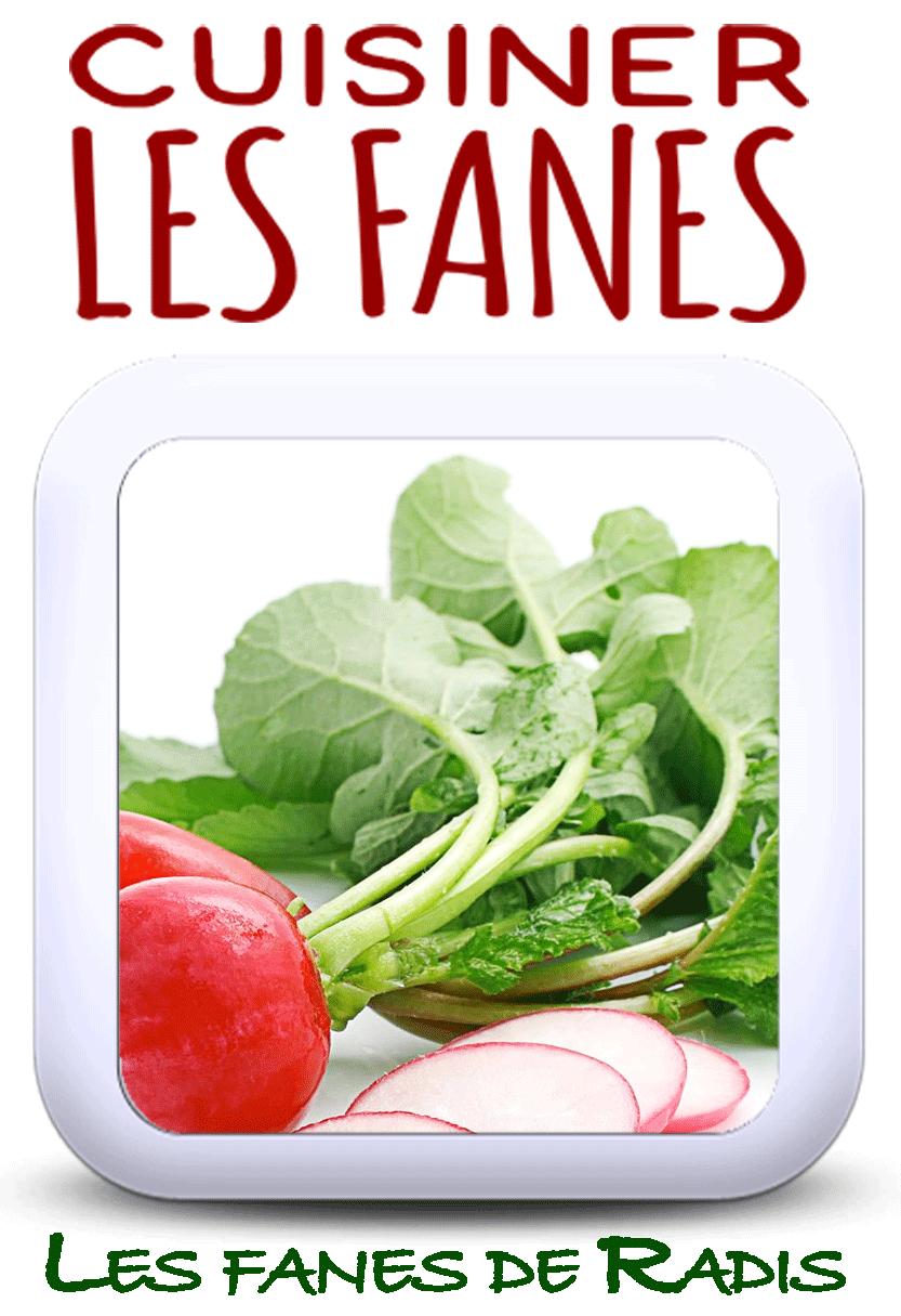 7 recettes pour cuisiner les fanes de radis