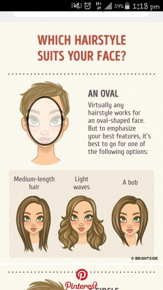 7 Most Common Facial Shapes Which Haircut Suits Your Client Hair Guide Hair Styles Face Shapes
