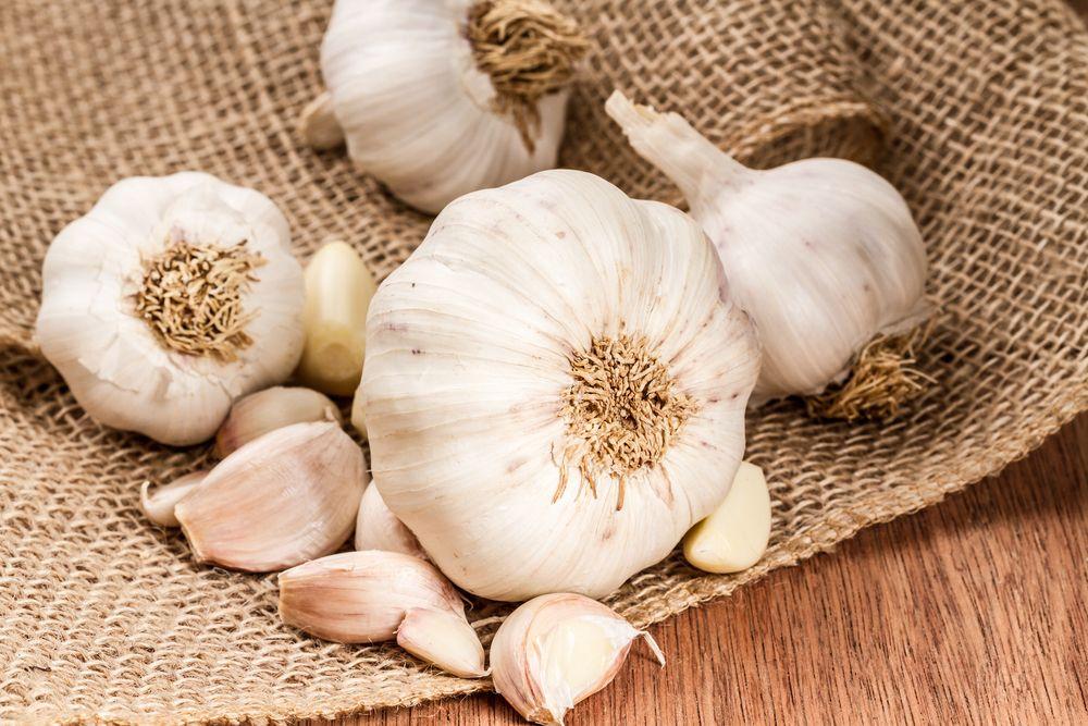L'ail, un antibiotique naturel aux nombreuses vertus santé
