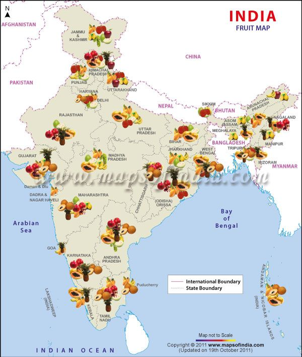 Map Depicts Fruit Producing States In India Geo Graphs Maps Of