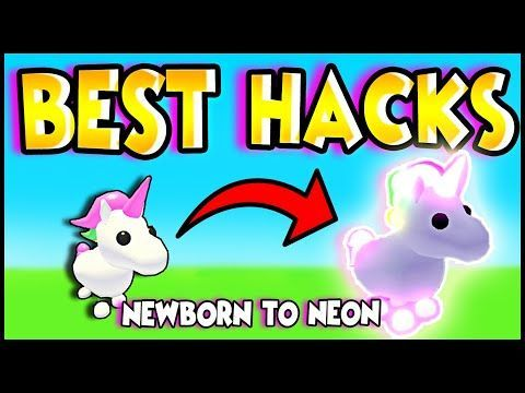 Best Hacks To Level Up Any Pet Fast In Adopt Me How To Age Pets Fastest With Adopt Me Hacks In 2020 Roblox Roblox Pictures Adoption