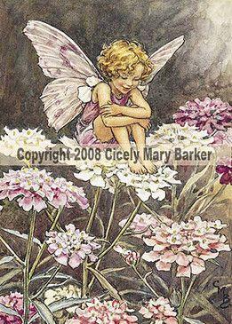 Ceramic Sensations Canterbury Bell Flower Fairy Fairy Art Flower Fairies Cicely Mary Barker