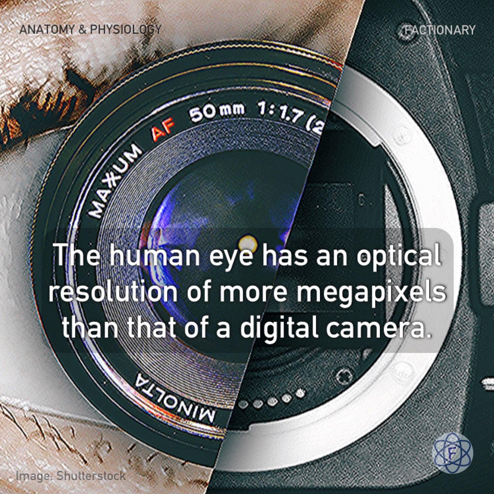 Human Eye Vs Camera