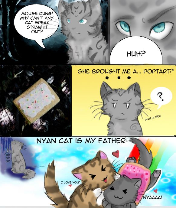 Oh My Gosh This Is Why I Love Jayfeather So Much This Right