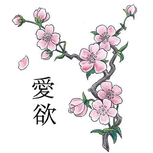 Cherry Blossom Flor De Cerezo Dibujo Tatuaje De Cerezo Cerezos Dibujo
