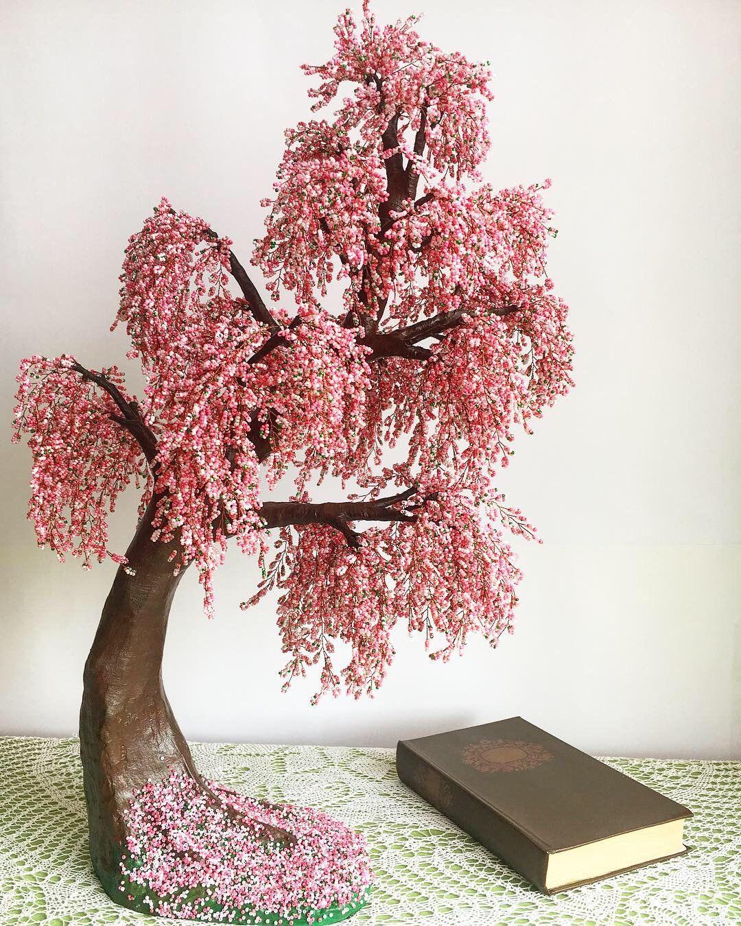 Pin On Bonsai Tree