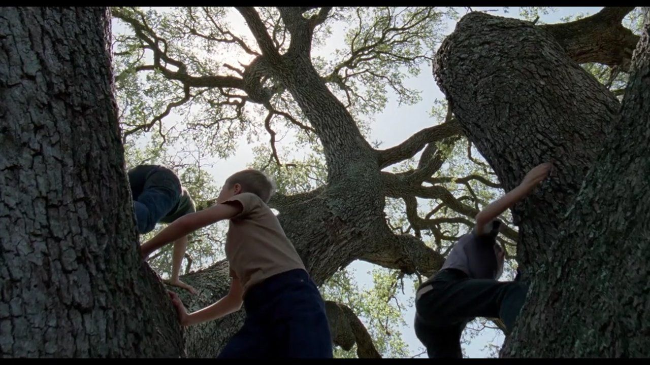 촬영감독 엠마누엘 루베즈키(Emmanuel Lubezki)의 아름다운 영화 속 장면들