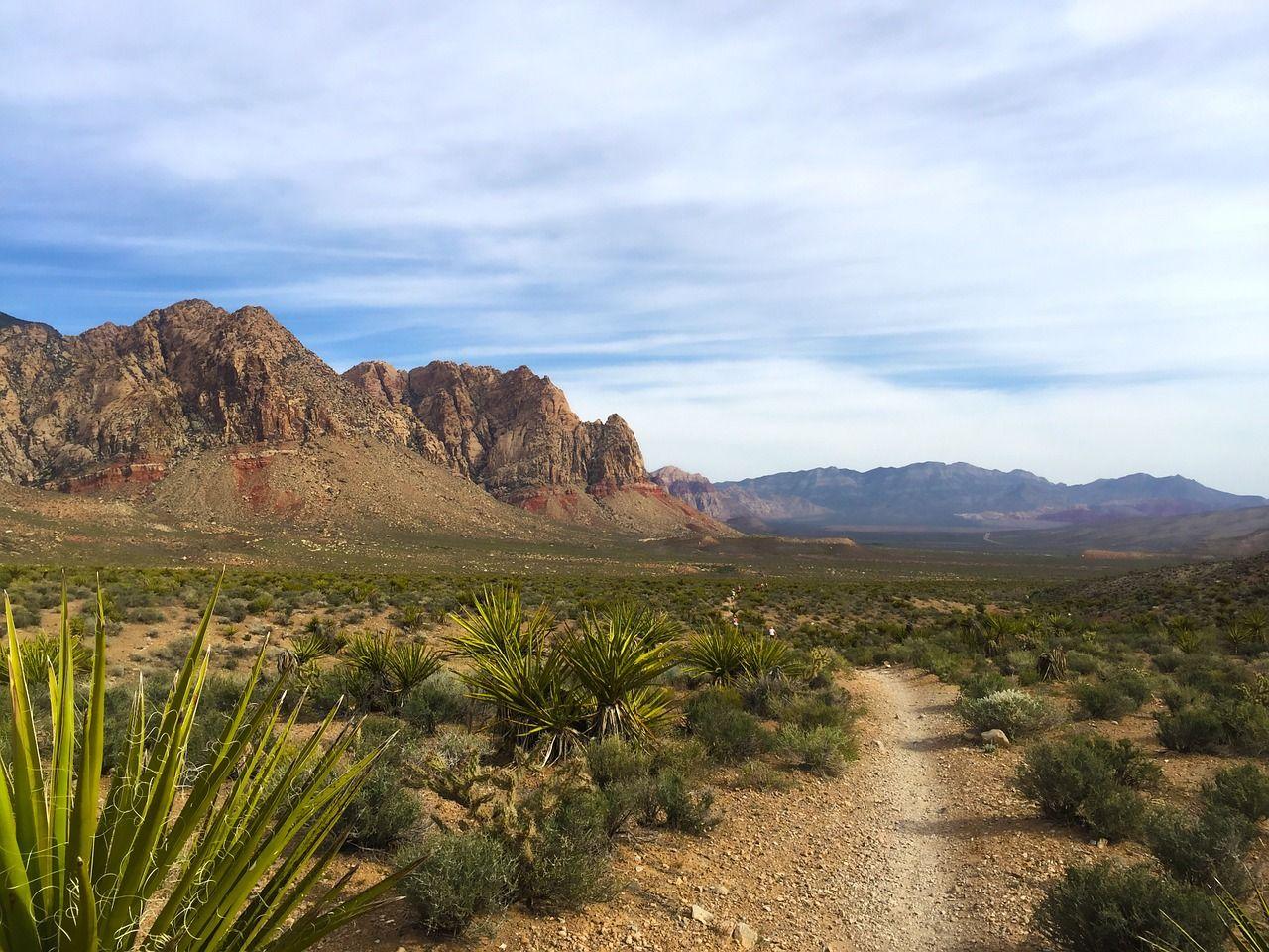 Park, Red Rock Canyon, National Park park, redrockcanyon