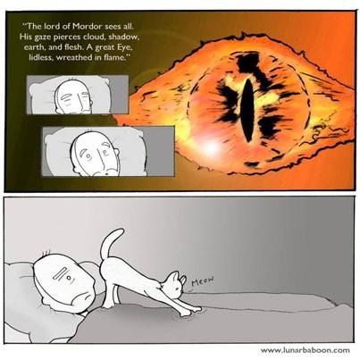 One does not simply look at the Sauron's Eye. #lotr #sauron #funny