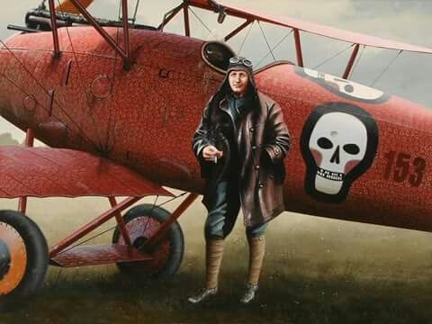 Albatros Dlll, Hauptmann Godwin Von Brumowski | Aircraft art, Vintage  aircraft, Fighter aircraft