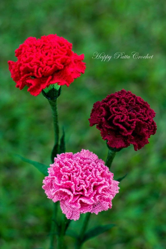 Crochet Carnation Pattern By Happy Patty Crochet Pattern For A