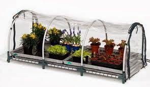 Piccoli Frutti: Arredare il terrazzo con una mini serra | Giardino ...