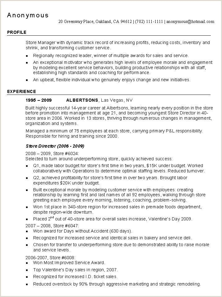 Professional Cv format for Sales Manager Professional Cv