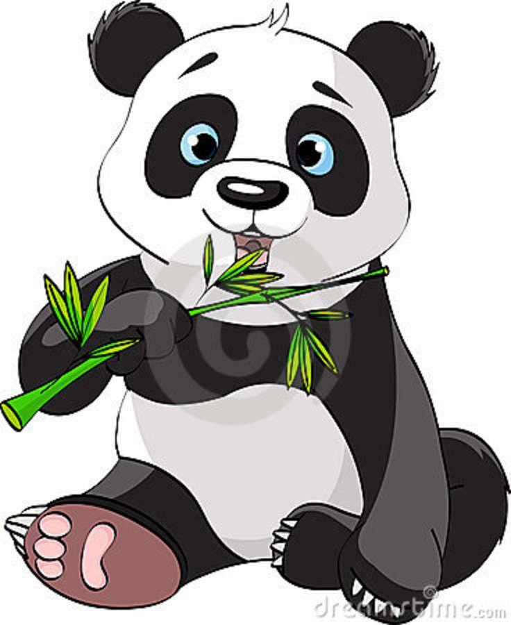 Panda Eating Bamboo Panda Drawing Cartoon Panda Panda Art