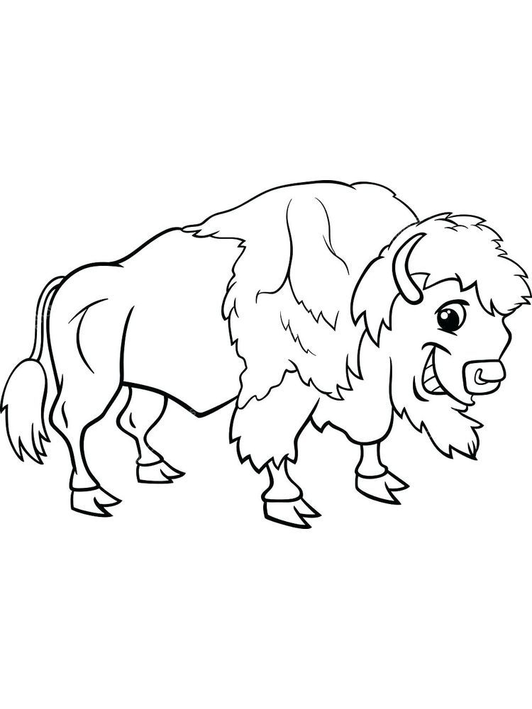 Free Printable Buffalo Coloring Pages Di 2020