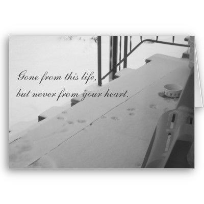 A touching and thoughtful sympathy card for a pet owner who has lost their best furry friend.