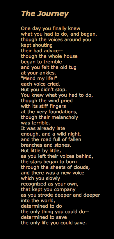 Mary Oliver poem: this is currently my favorite poem by her.   Not a book but well worth reading.