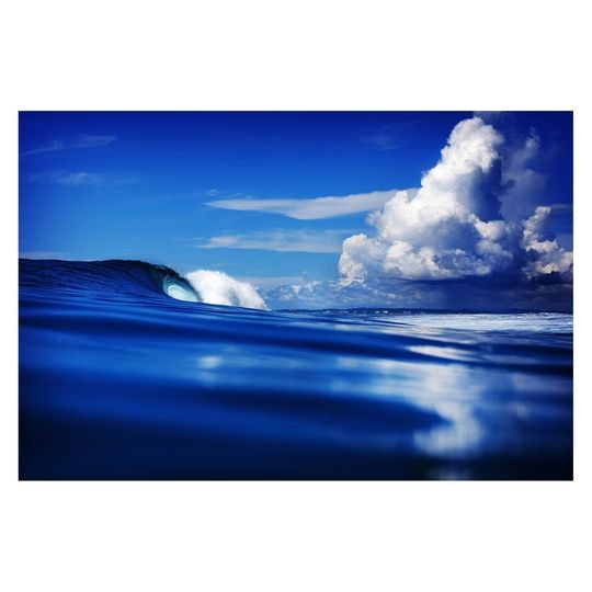 Fill yourself with the free-spirited energy of the cresting waves with these majestic prints.