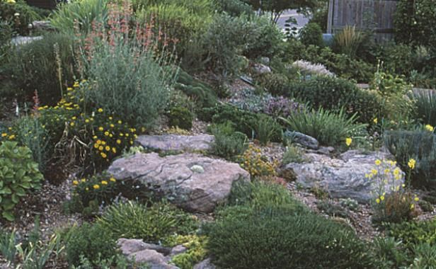 Rock Garden Primer Landscaping With Rocks Rock Garden Rock