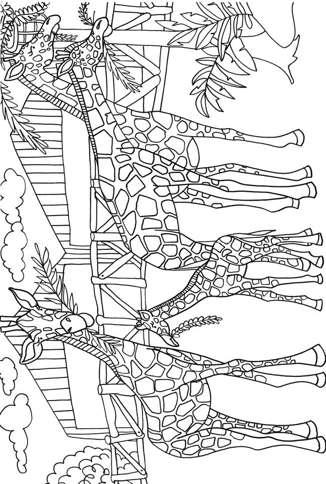 Welcome to Dover Publications   Dover coloring pages ...