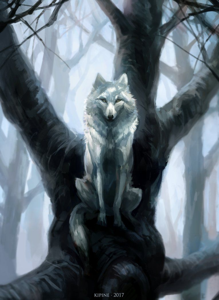 Photo of The Wolf Who Sat in a Tree by Kipine on DeviantArt