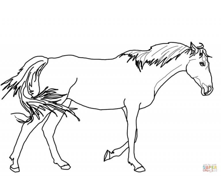Walking Thoroughbred Horse Coloring Page Horse Coloring Horse