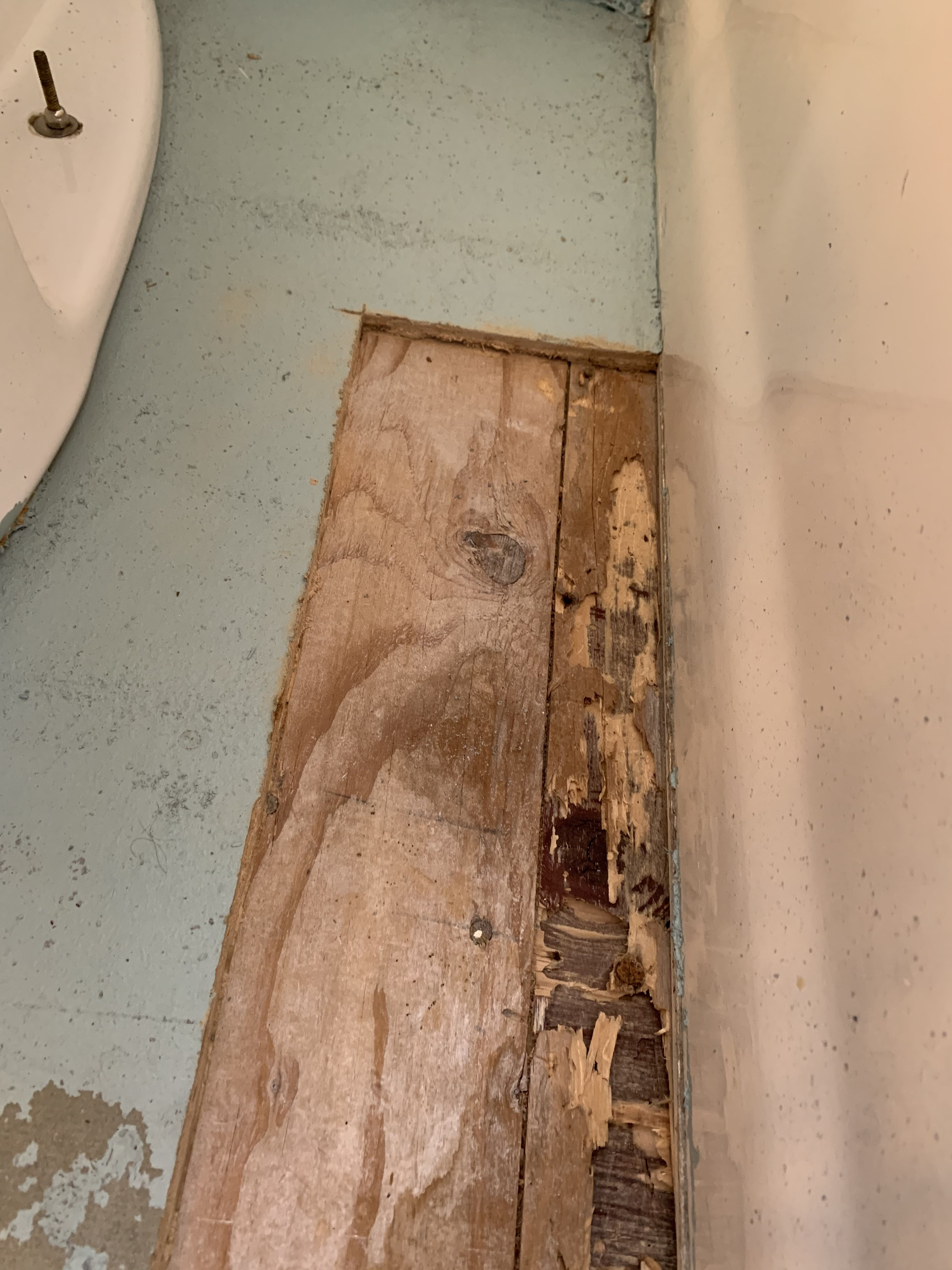 Bathroom Remodels Uncover Dry Rot And Termite Damage It Happens Construction Life Boyledesign831 Interiordesig In 2020 Termite Damage Bathrooms Remodel Remodel