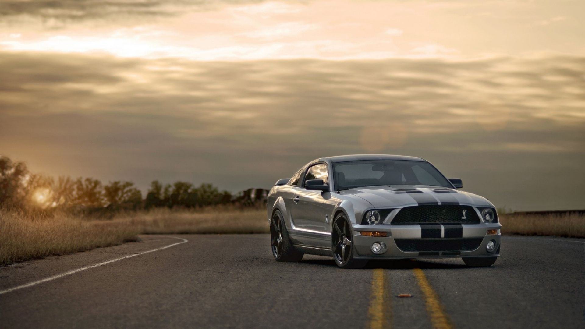 Download Wallpaper 1920x1080 Ford Mustang Shelby Gt350 Auto Full Hd 1080p Hd Background Ford Mustang Mustang Shelby Cobra Mustang