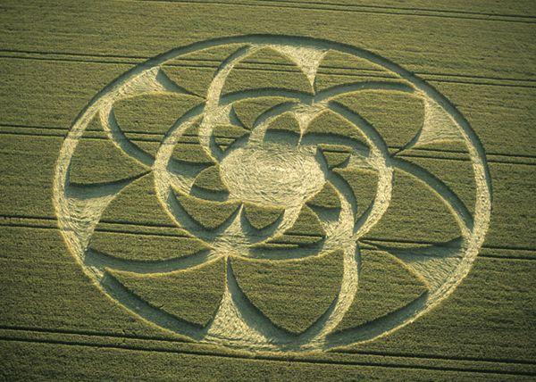 crop circle near Barbury Castle, Wiltshire