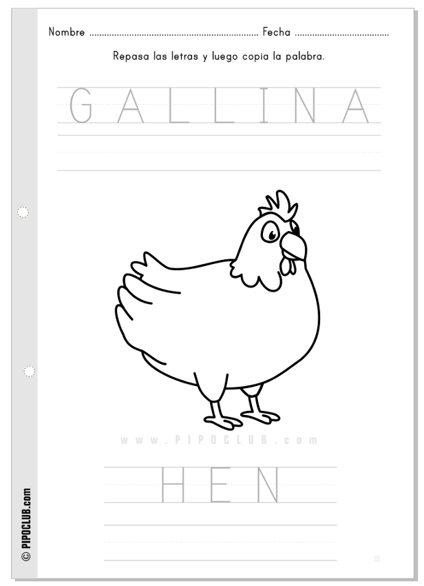 actividad Gallina / Hen #vocabulary #animals #worksheet #preschool ...