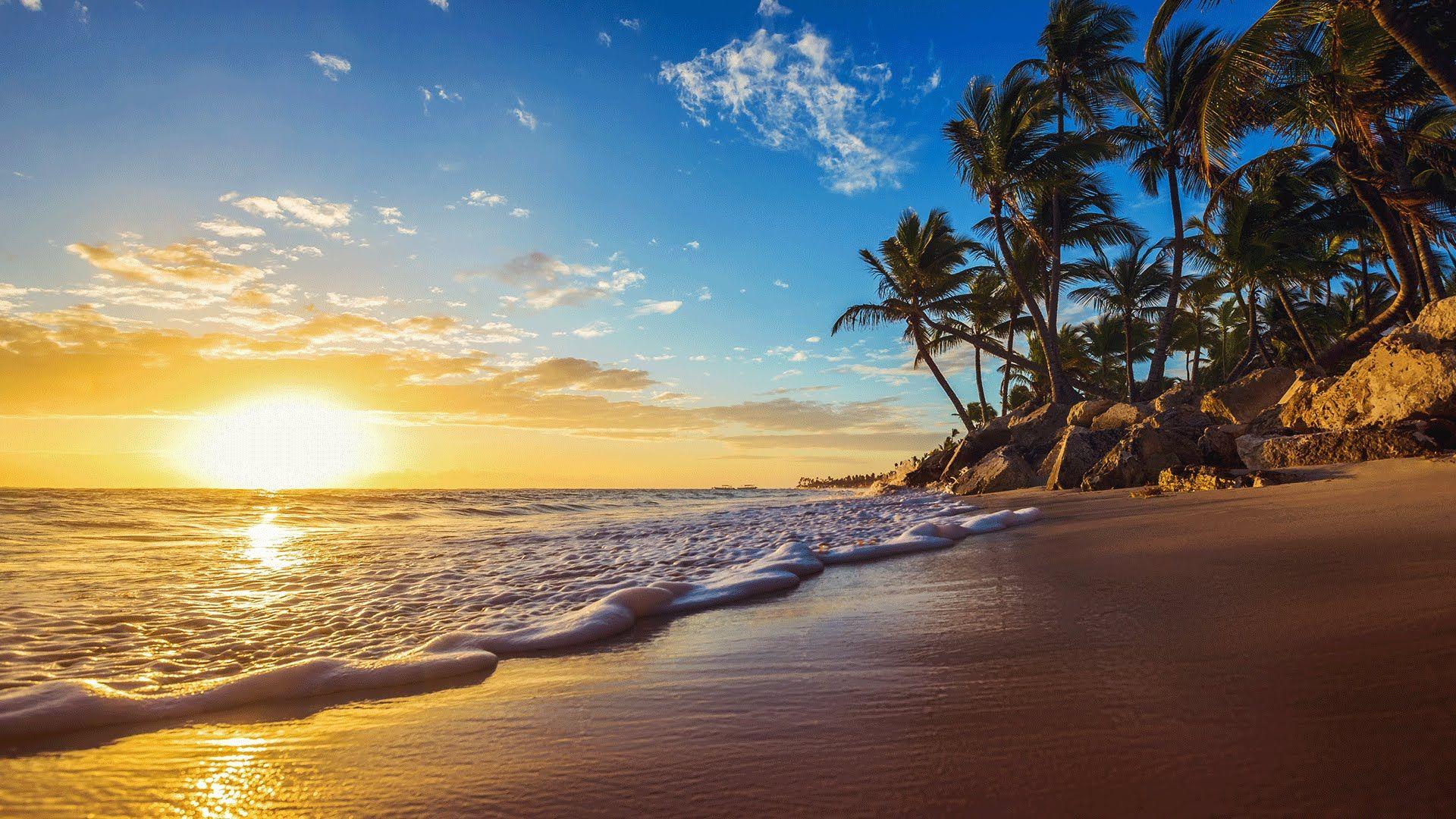 Calm Background Relaxing Music With Ocean And Bird Sounds Tropical Island Beach Sunrise Beach Island Beach