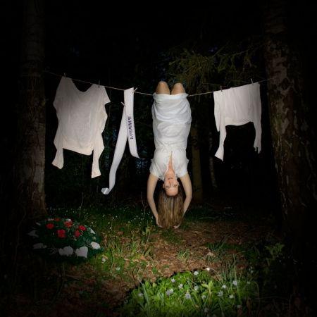 Sasanky, z cyklu Noční přízraky