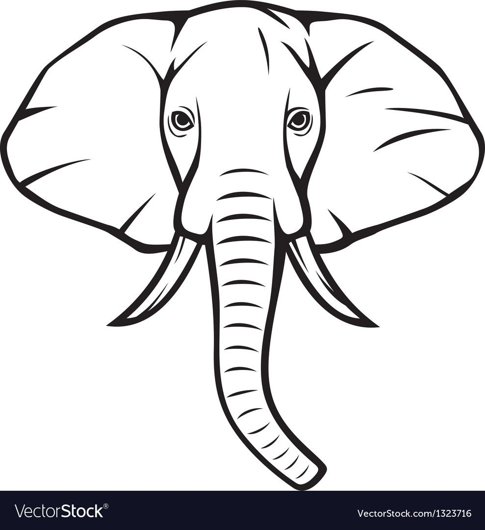 Elephant Head Royalty Free Vector Image Vectorstock Spon Royalty Head Elephant Free Ad Elephant Head Drawing Elephant Face Elephant Clip Art