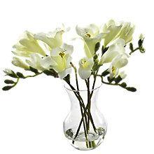 Buy Peony Freesias In Vase, White Online at johnlewis.com