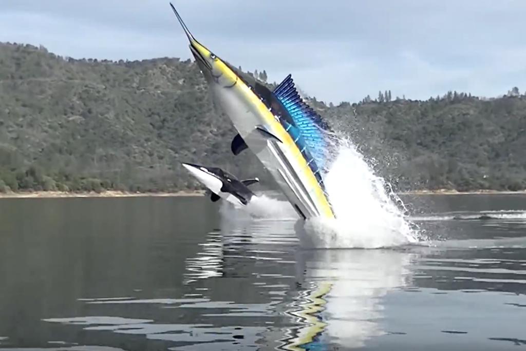 Look Like A Fish When You Doabarrellroll In This Seabreach Jetski Sub Hybrid