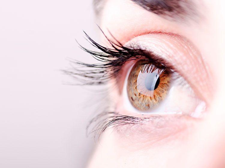Do Eyelashes Grow Back? | Do eyelashes grow back, How to ...