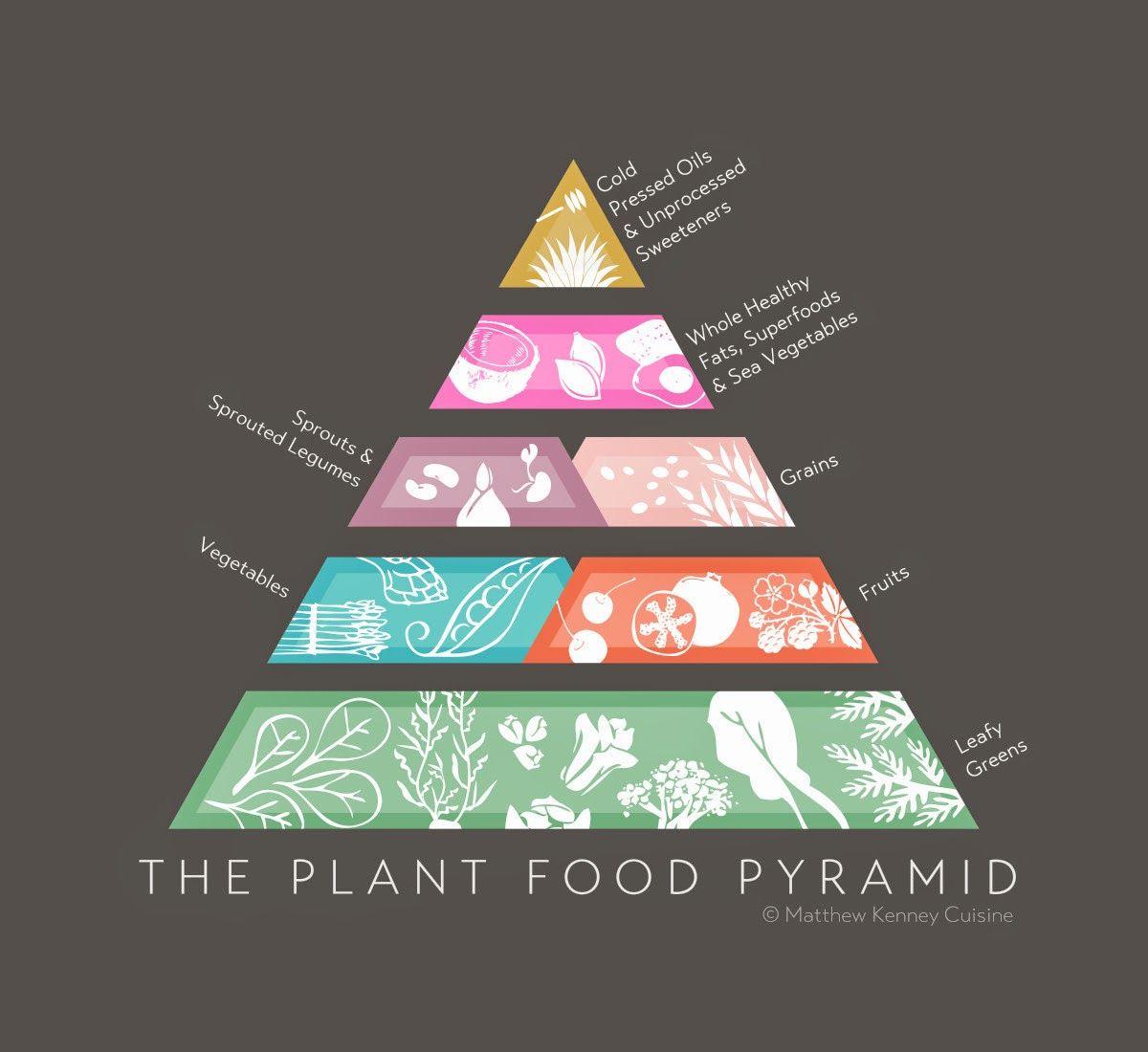 fun plant knowledge - Google Search