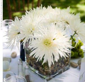 Spider Mums Flower Centerpieces Wedding Flower Centerpieces White Flower Centerpieces