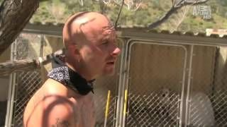 Pit Bulls And Parolees Season 1 Episode 6 Via Youtube Pitbulls Pit Bulls Parolees Pitbull Lover
